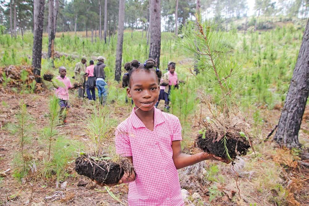 Var med och få Haiti att grönska igen!