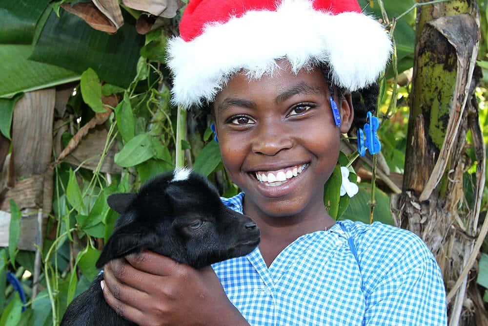 Glöm julbocken – en get gör julen godare!